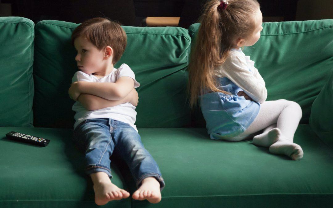 La ferita narcisistica e la presenza dei fratelli | Psicopatologia gestaltica